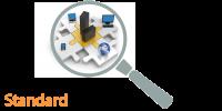 IT-Sicherheits-Check Standard